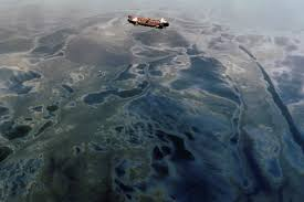 the oil spill cleanup illusion hakai magazine truth bombs