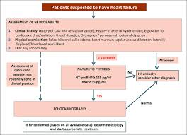 Heart Flow Chart Flow Chart For The Diagnosis Of Heart Failure Adapted From