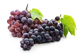 Grapes - Source of Resveratrol