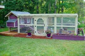 35 Best For The Chickens Images On Pinterest  Backyard Chickens How To Keep Backyard Chickens
