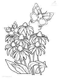1001 Kleurplaten Seizoen Lente Bosje Bloemen