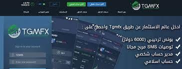 أفضل شركة تداول بالخليج العربي .. تعرف عليها الآن   أخبار البيتكوين