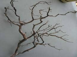 18 decorative tree design images decorative tree wall on wall art with real tree branches with tree branches wall art elitflat