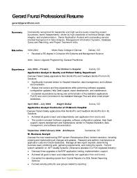 Resume Summary Statement Amazing Outline For Re Example Resumes Resume Summary Statement Examples