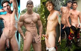 Top gay porn stars