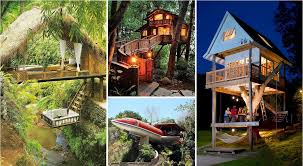 How To Make A Treehouse That Kids And Adults Will LoveHow To Build A Treehouse For Adults