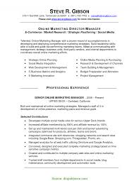 Social Media Skills Resume Valuable Social Media Skills Resume Social Media Manager Resume 1