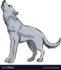 wolf howling. Fine Wolf Wolf Howling To Moon Vector Image Inside Howling D