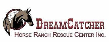 Dream Catchers Horse Ranch DreamCatcher Horse Ranch Fall Family Festival 45