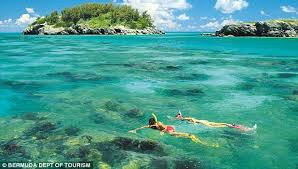 Image result for bermuda