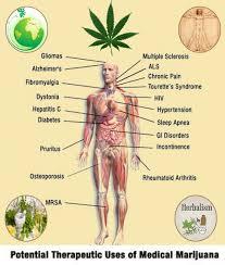 marijuana good purposes