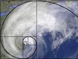 """Résultat de recherche d'images pour """"fibonacci ouragan"""""""
