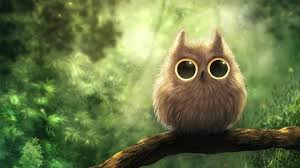 Cute Owl Wallpapers (27+ images ...