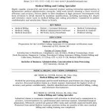 Information Technology Specialist Resume Sample New Best Solutions