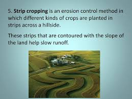 Unit 4 Environmental Science Ppt Download