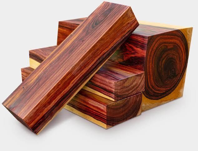 macam macam kayu