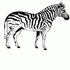 Animated cute zebra coloring page for kids. Zebra Coloring Pages Free Printable Pictures Coloring Pages For Kids Coloring Home