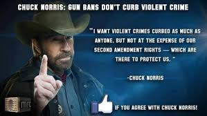 2nd Amendment Quotes Extraordinary Humorous 48nd Amendment Quotes SIMPLE TRUTH Pinterest Chuck Norris