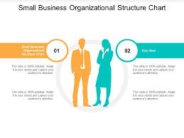 Small Business Organizational Structure Chart Small Business Organizational Structure Chart Ppt Powerpoint