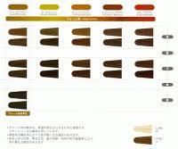 Diacolor Chart L Oreal Diacolor Gelee Colour Chart Loreal Hair Colour