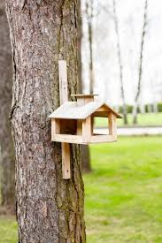 wooden feeding trough for birds hanging on the tree stock photo