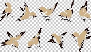 House Sparrow Bird Png Clipart Beak Carnivoran