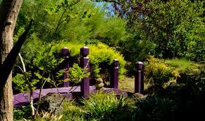 Coastal Gardens Q Gardens & Design