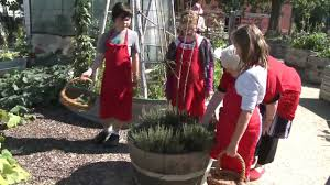 Kitchen Garden Program Join The Stephanie Alexander Kitchen Garden National Program Youtube