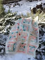 Baby Quilt Top in the Snow | Quilting Stories & Baby Quilt Top in the Snow Adamdwight.com