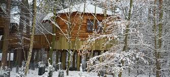 Tree House HolidaysFamily Treehouse Holidays Uk