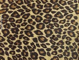 1024 x auto leopard print twitter backgrounds pimp my profile com leopard print wallpaper