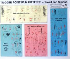 Travell And Simons Trigger Point Chart 2 Www
