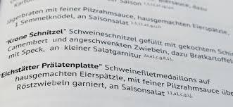 Die Dialektik Der Historischen Aufklärung Gegen Die Afd Stützen