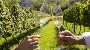 brazilian sparkling wine cheers toast glass
