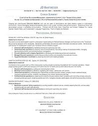 Executive Summary Resume Examples Adorable Example Of Professional Resumes Hflser