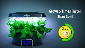 best way to grow indoors 5 times faster how to review you