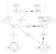 solved  exercise   computer sciences department frequent flie          iis  png  figure   er diagram
