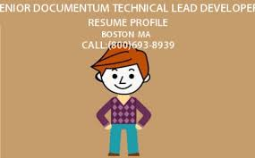 Hire I T Professionals Senior Documentum Technical Lead Developer