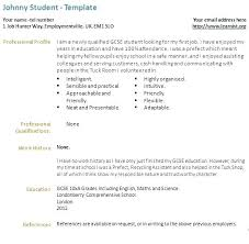 Resume Tips For First Time Job Seekers First Time Resume Templates Sample Resumes For Customer Service