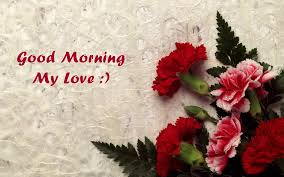 Good Night Rose Wallpaper Download Romantic Good Morning Quotes