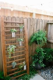 846 Best Garden Plants Images On Pinterest Balcony Do It