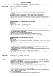 Resume Examples Security Awareness Resume Samples Velvet Jobs 20