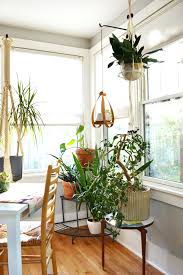 home plants decor awesome indoor plant decoration ideas introduce  tantalizing wooden prepossessing house decorations