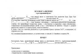 подать заявление на развод в суд через мфц Портал правовой   подать заявление на развод в суд через мфц фото 6