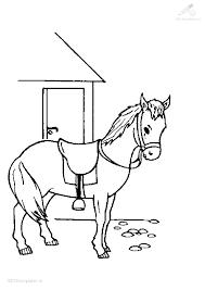 Kleurplaten Nl Dieren Paarden Information Dejachthoorn