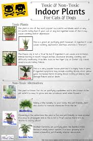 toxic and non toxic plants for pets