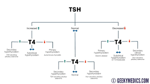 Tsh Range Chart Thyroid Function Test Interpretation Tft Interpretation