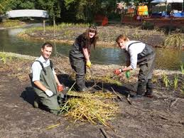 Welcome to Luke, Olly and Polly! – South East Rivers Trust (& the Wandle  Trust)