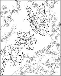 Kleurplaat Met Bloemen En Vlinders Coloring Page Butterflies And