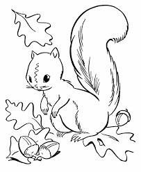 Small Picture Fall Season Coloring page Squirrel Collecting Acorns Arts